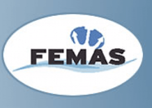 Federation of European Maritime Associations of Surveyors & Consultants (FEMAS).png