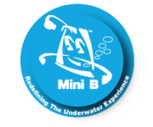 Mini B Ltd.png