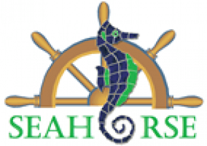 Seahorse Shipping & Engineering Co Ltd (Seahorse Denizcilik ve Muhendislik Ticaret Ltd Sti).png