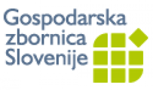 Chamber of Commerce & Industry of Slovenia (INFOLINK).png