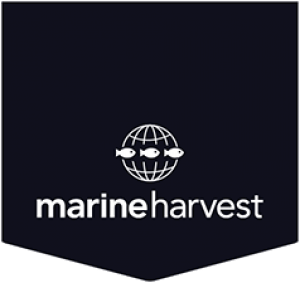 Marine Harvest Norway AS.png